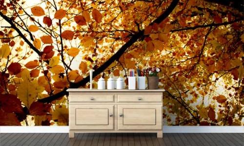 Wallpapered_Autumn_Leaves_O_Gorman