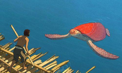 170119_MOV_red-turtle.jpg.CROP.promo-xlarge2